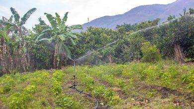 Importante avance presenta proyecto sistema de riego por aspersión
