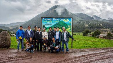 Producción permanente de pino y aprovechamiento de madera asimilaron los beneficiarios del proyecto forestal Tintiniquiato
