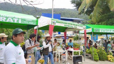 Municipalidad de Echarati descentraliza feria gastronómica y noche del café