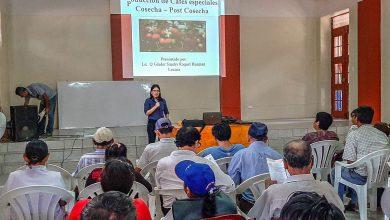 MDE impulsa curso taller sobre la importancia del barismo en la producción de café