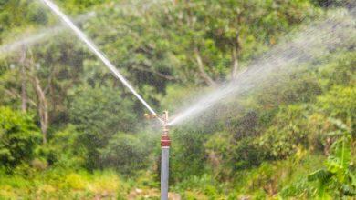 El fin de semana se realizó la prueba hidráulica del proyecto de riego Cocabambilla