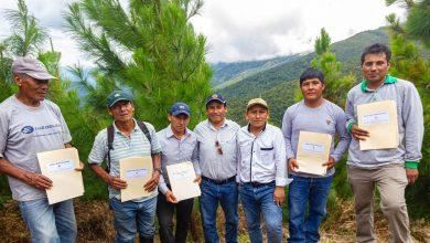 MDE entregó a beneficiarios el proyecto forestal de Sangobatea