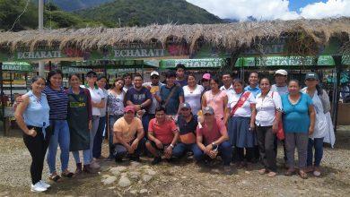 Productores agroindustriales de Echarati recibieron reconocimiento en Quillaferia